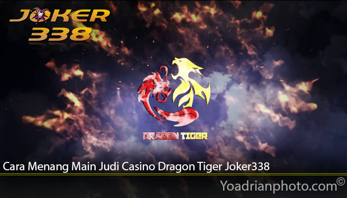 Cara Menang Main Judi Casino Dragon Tiger Joker338