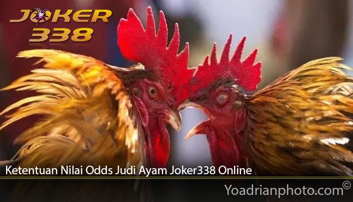 Ketentuan Nilai Odds Judi Ayam Joker338 Online